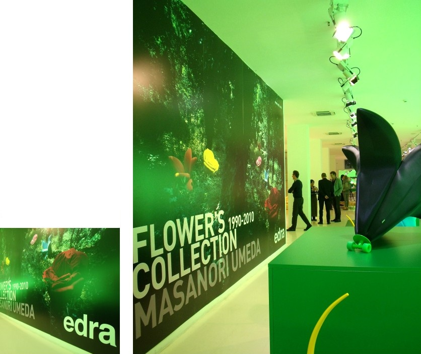 grafica/edra showroom.jpg